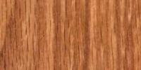 Oak Medium Stain